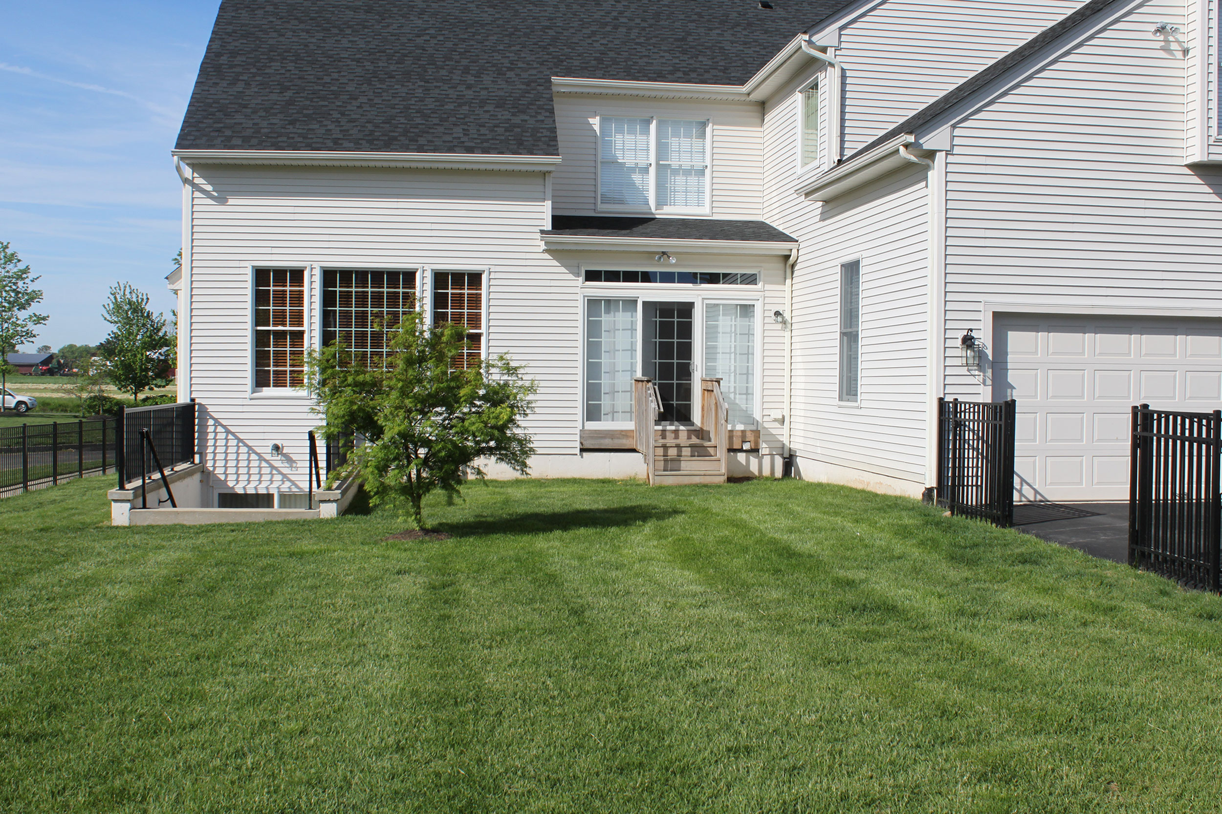 before-landscape-design